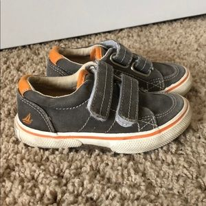 Sperry shoe